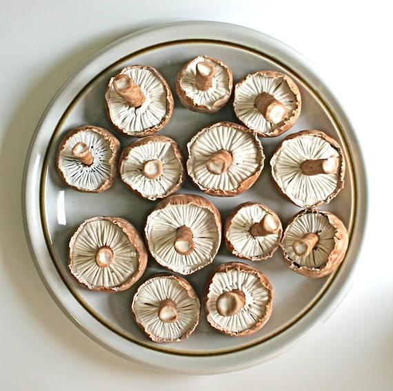 Chocolate candy mushrooms