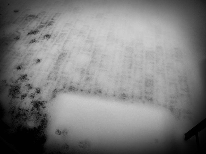Snowy Weather_2