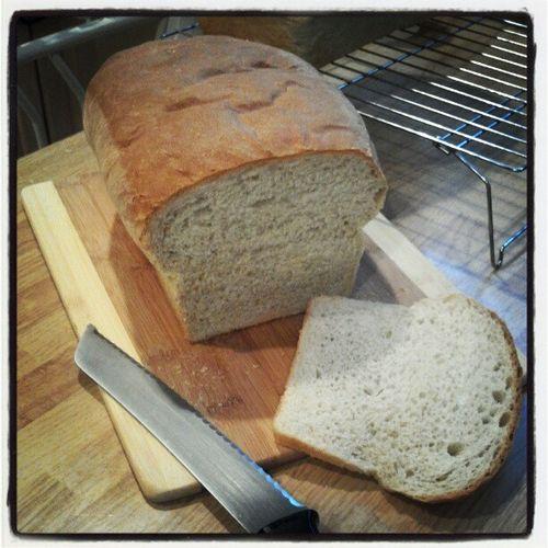 Fresh bread2